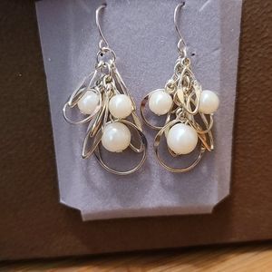 NWOT Earrings